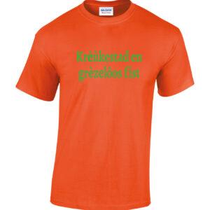 Zomer carnaval t-shirt met leuke tilburgse teksten in groen/oranje en oranje/groen. HB-Webshop onderdeel van HB-Creations Tilburg Reeshof.